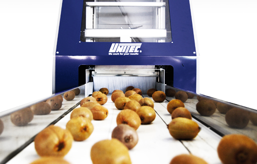 kiwi processing machine